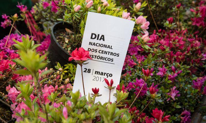 Entrega de Azálea Japónica - Dia Naciona dos Centros Históricos (9)