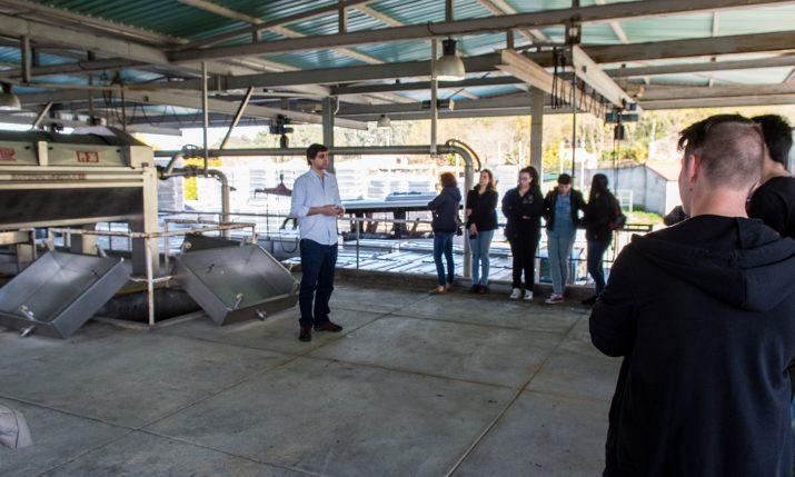 Visita à Adega Quintas de Melgaço _14-03-2017 (2)
