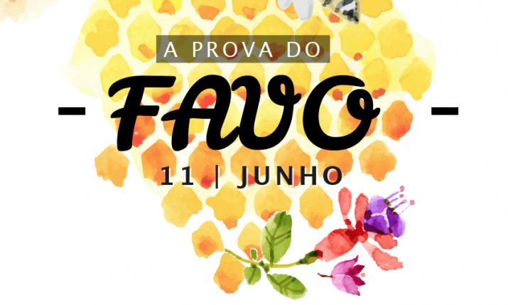 Prova_Favo