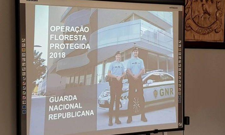 Ação _ Vila e Roussas (8)