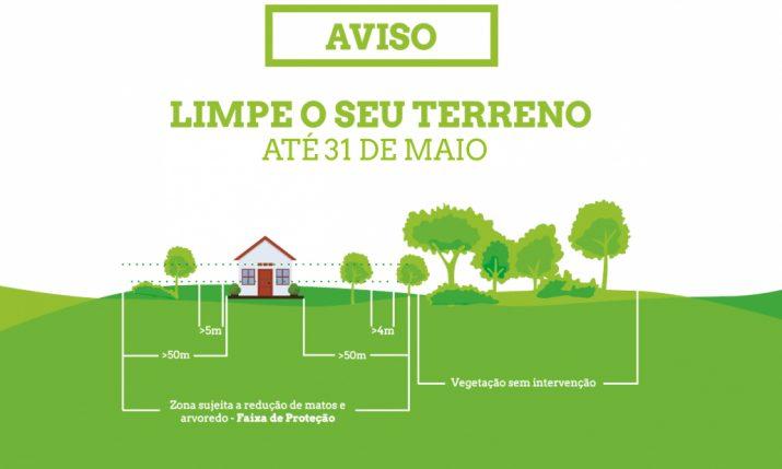 NI_limpeza-terrenos-1030x723