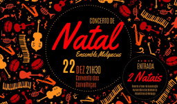 https://www.cm-melgaco.pt/wp-content/uploads/2020/07/Concerto-de-Natal-1030x636-_resized256x150.jpg